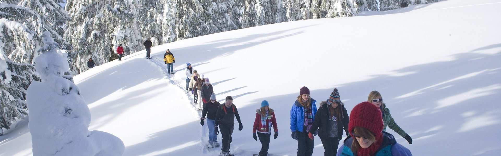 Group travel deals - snowshoe walk